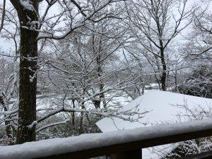 那須高原の秋 那須高原の冬 積雪