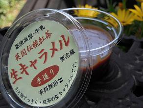 栃木 那須高原 アンティーズ 英国伝統紅茶館 紅茶生きゃらめる