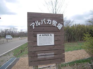 栃木 那須高原 アルパカ牧場 看板