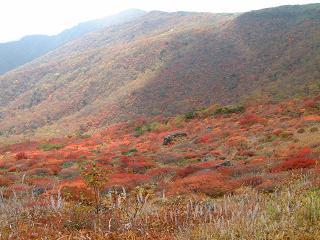 栃木 那須 紅葉 茶臼岳