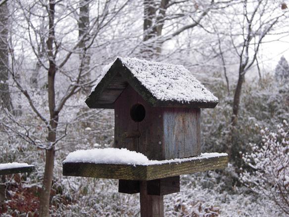 栃木 那須高原 ペンショントント 冬 雪 巣箱
