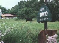 栃木 那須高原 ペンショントント 看板 牛