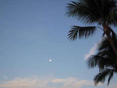 ハワイ 海 ワイキキビーチ 朝 月
