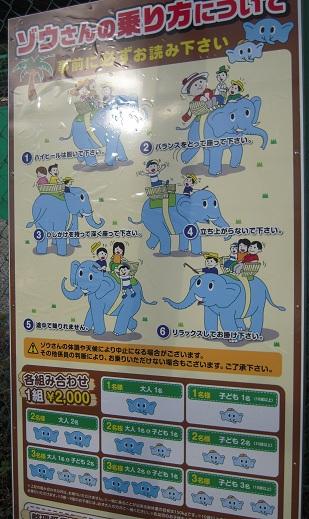 栃木 那須高原 ワールドモンキーパーク 象 ゾウ ゾウライド