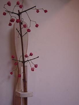 栃木 那須高原 ペンショントント 秋 木の実 マユミ