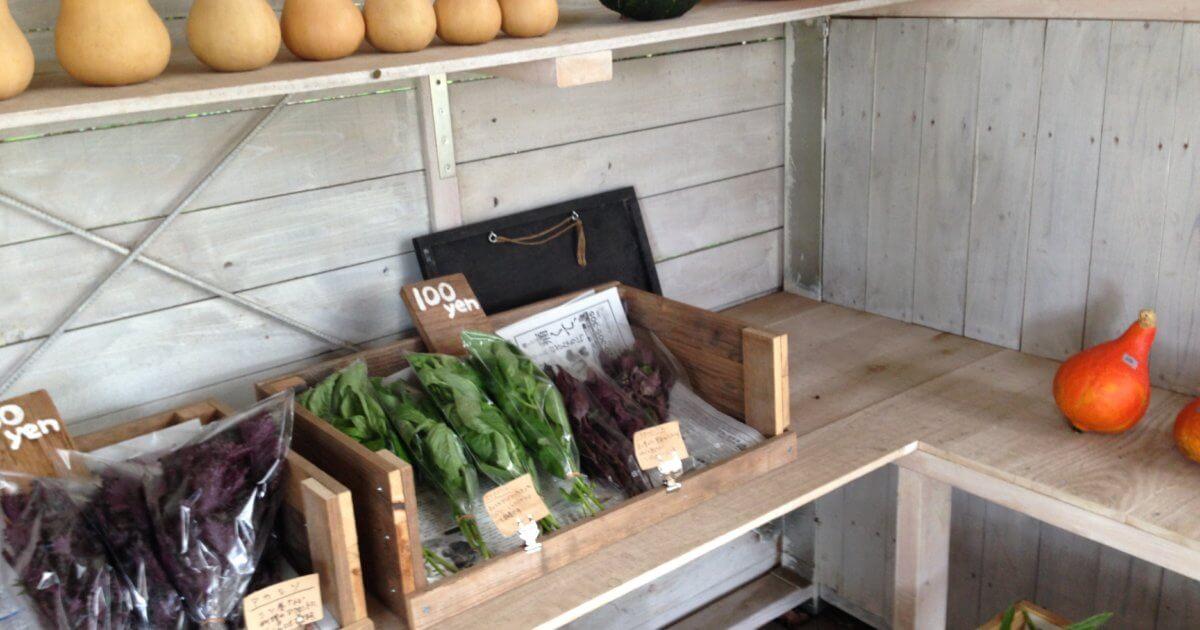 栃木 那須 成澤菜園 なるさわさいえん 無農薬野菜 直売所 野菜