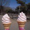 【那須】南ヶ丘牧場2009~さくらとあんこのソフトクリーム